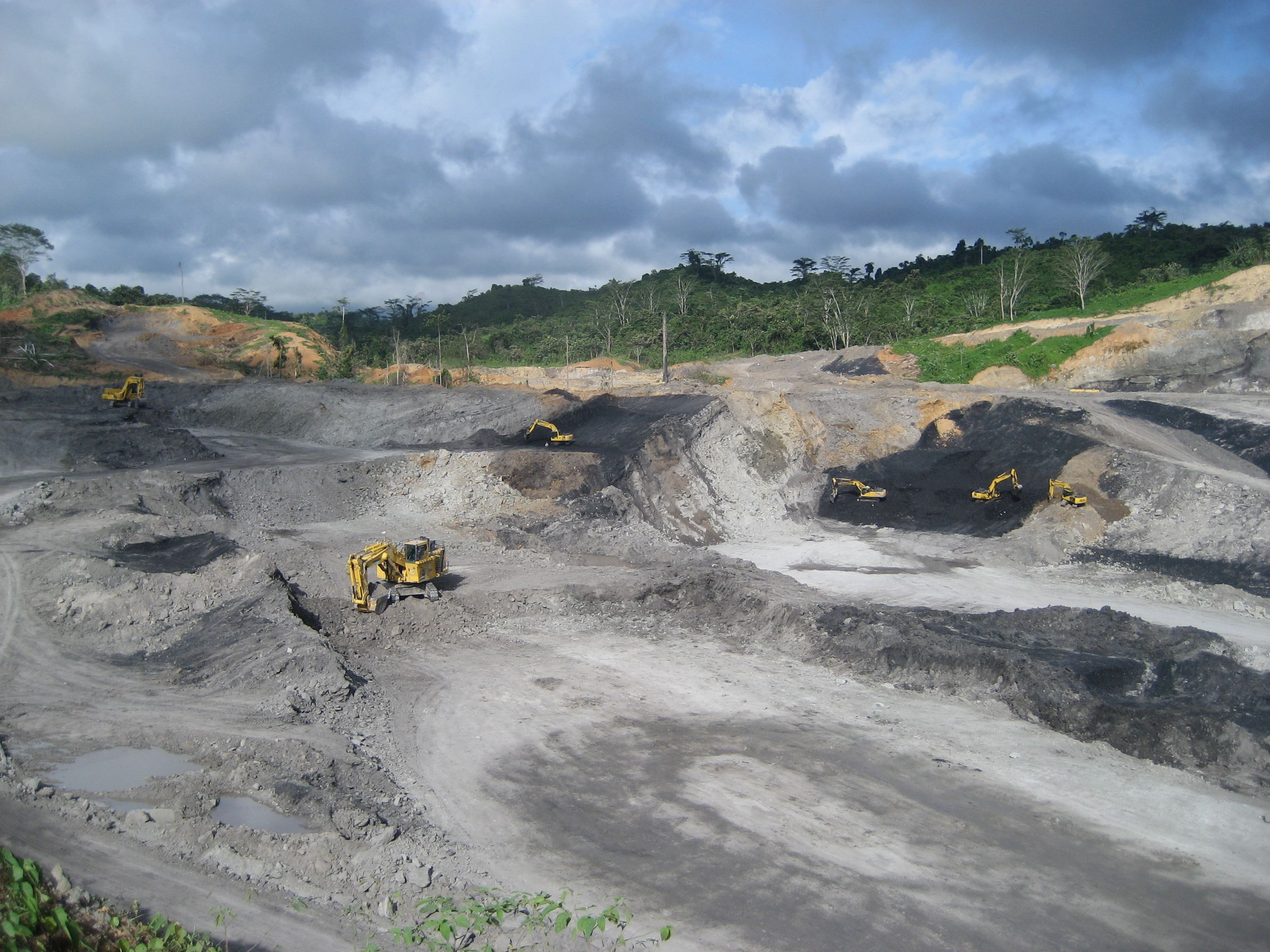 INTERVIEW-Indonesia coal companies